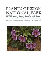Cover of The Plants of Zion by Ruth Nelson.